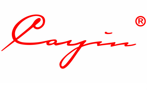 BLOG: The Fav Album Of…. – Cayin !